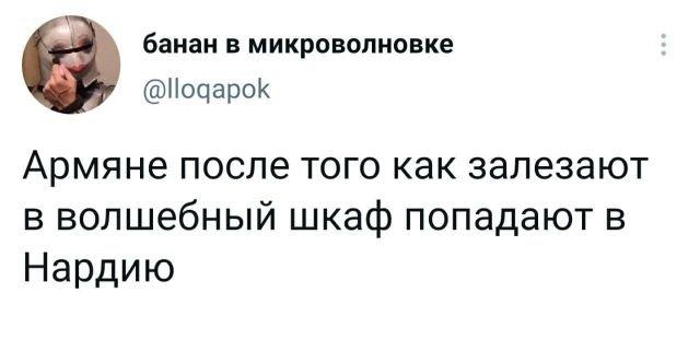 твит про арямн