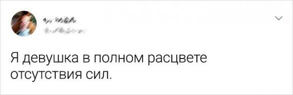 твит про силы