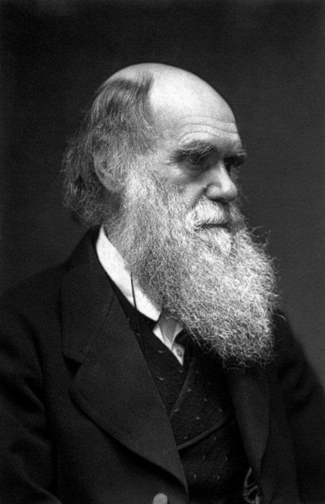 Редкая фотография Чарльза Дарвина, 1879