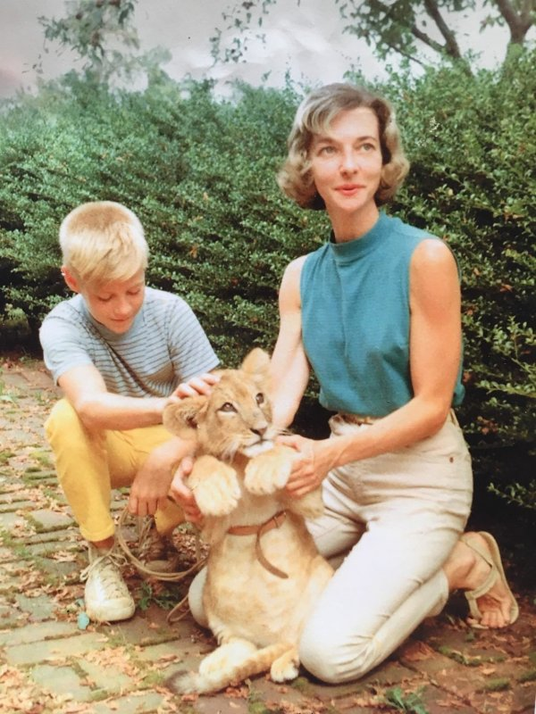 Отец и бабушка-ветеринар с их домашним львом, которого они растили 2 года