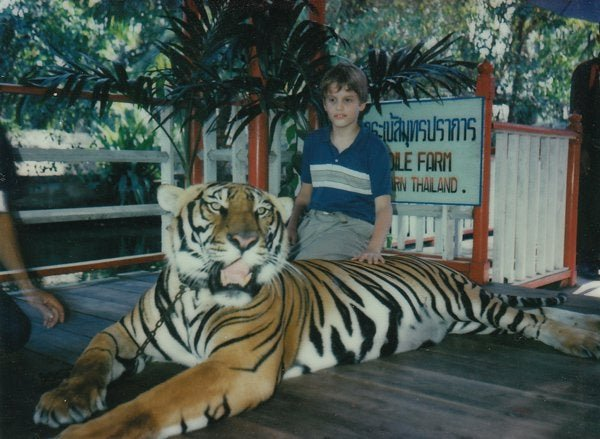 Просто фото 11-летнего меня, который гладит взрослого тигра