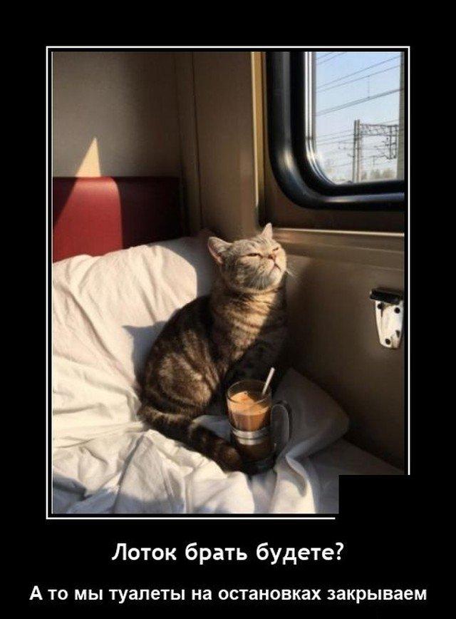 Демотиватор про поезд