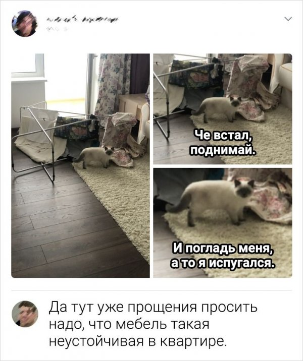комментарий про мебель