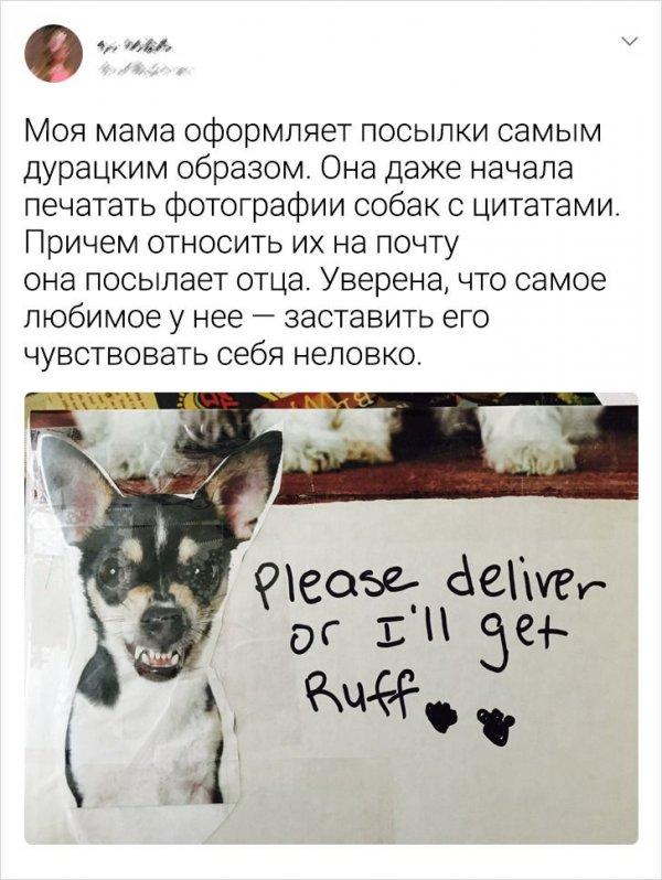 «Пожалуйста, доставь или я разозлюсь»