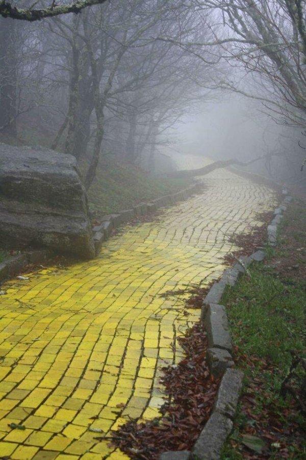 Заброшенная дорога из жёлтого кирпича в тематическом парке «Страна Оз» в Северной Каролине