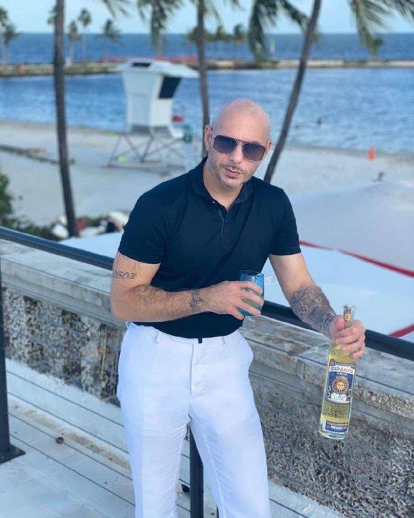 4 место — Pitbull