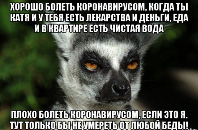 Шутки и мемы про коронавирус