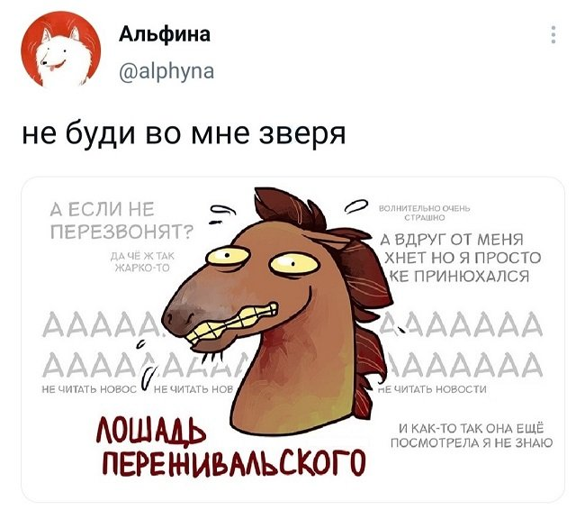твит про лошадь