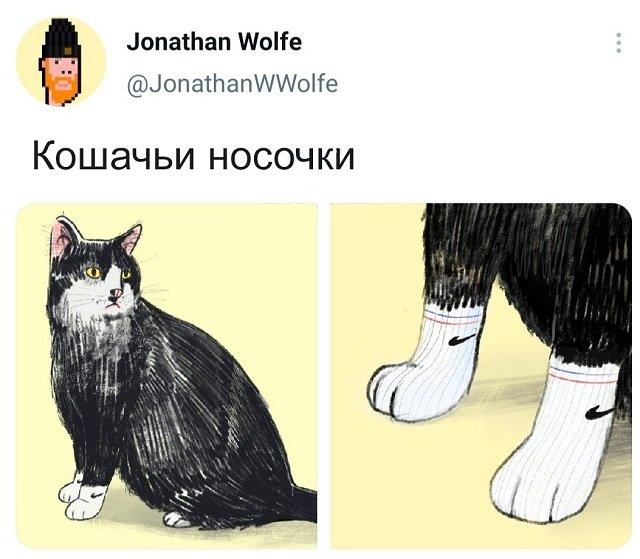 твит про носки