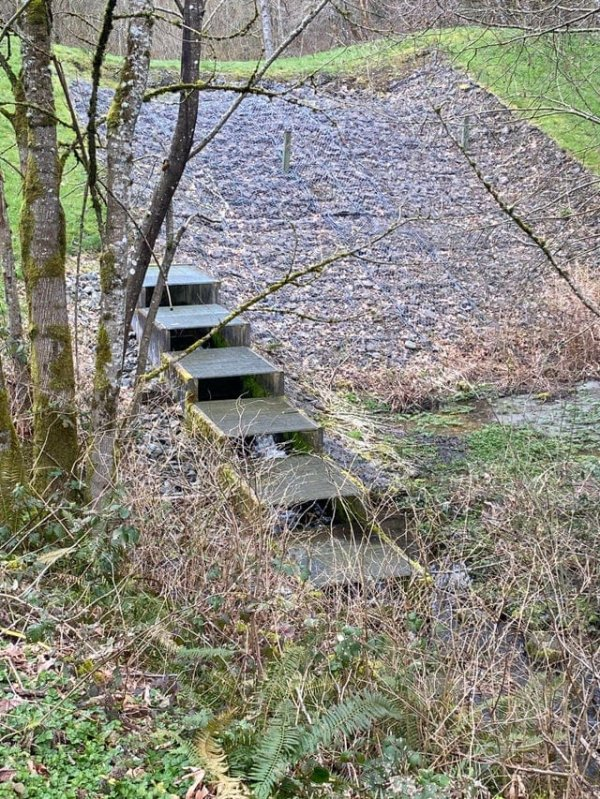 лестница для рыб