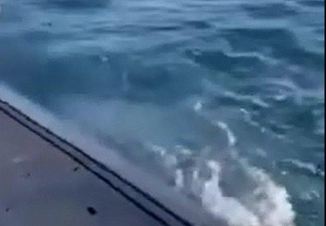 Подводники ВМС Нидерландов устроили барбекю в открытом море