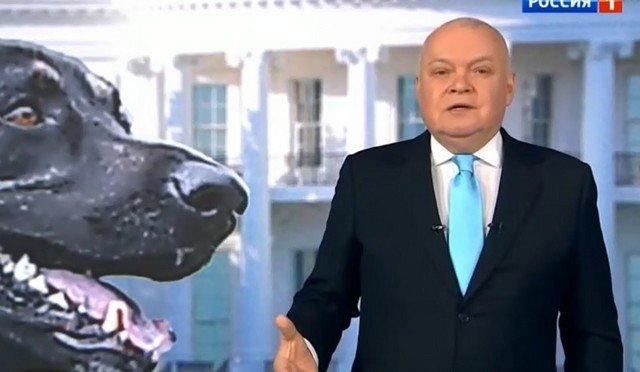 Дмитрий Киселев связал поведение Джо Байдена с псом Мейджором