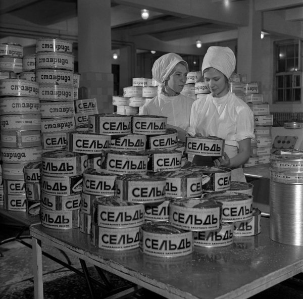 На заводе по производству морепродуктов, Мурманск, 1971 год