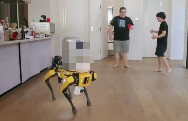 Блогер научил робота-собаку от Boston Dynamics разливать пиво