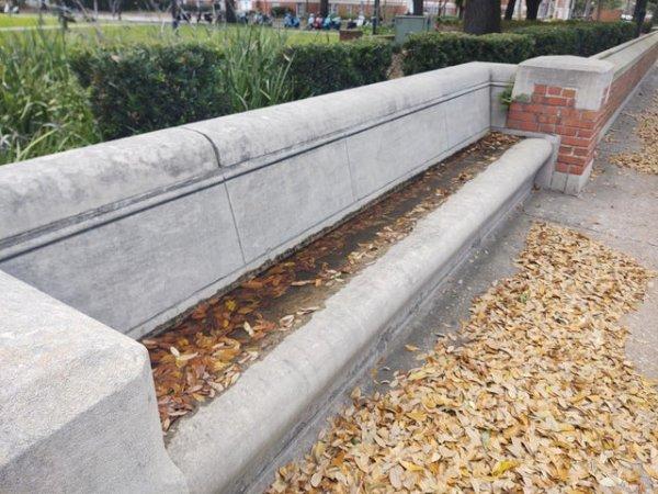 Эти скамейки устроены так, что вода в них стоит ещё несколько дней после дождя