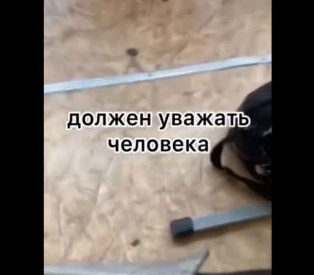 """""""Он у нас Навальным увлекается"""": диалог школьника с учителями и директором"""