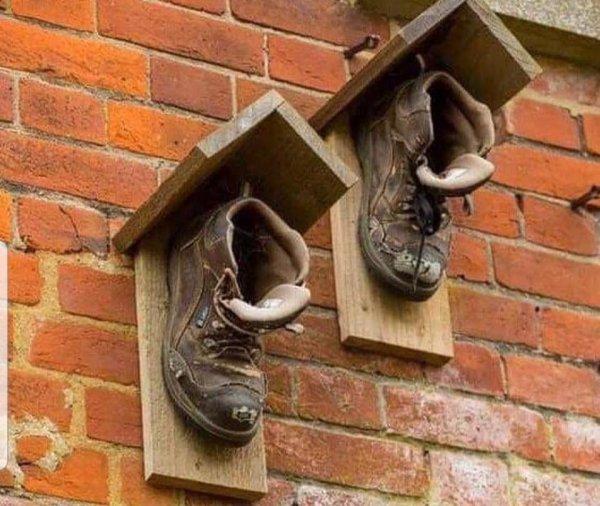 Старые ботинки можно использовать как скворечник