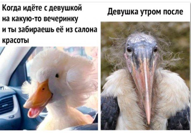 мем про макияж