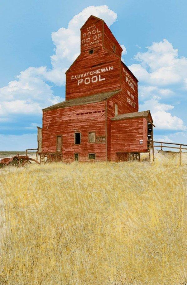 Пшеничный пул Саскачевана