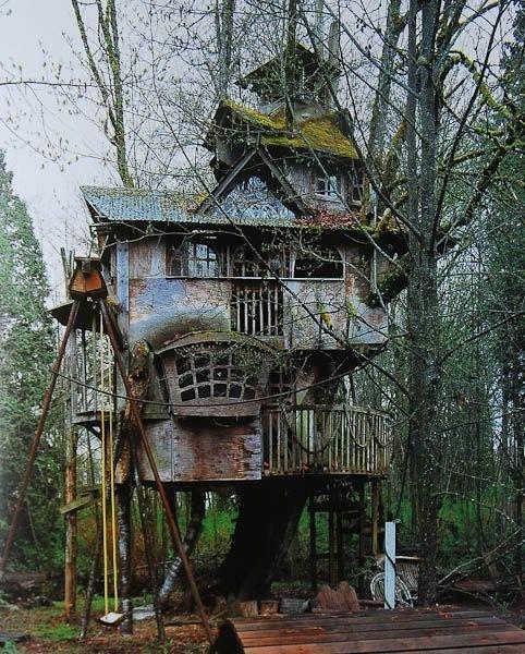Домик на дереве, который никому не нужен