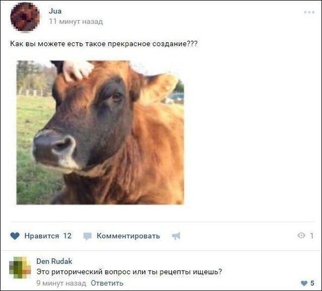 комментарий про корову