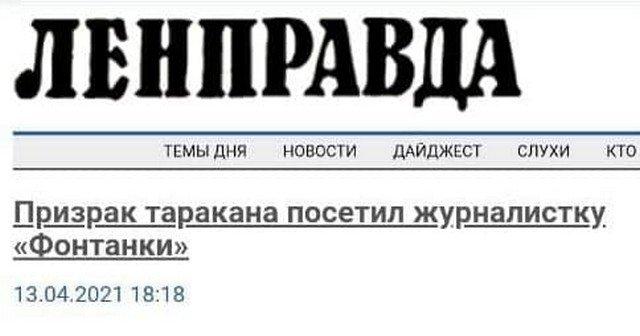 Забавные и странные заголовки из СМИ