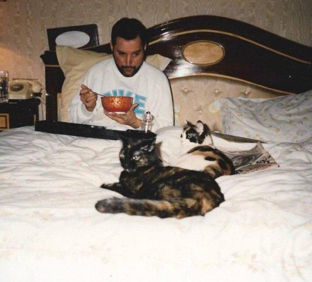 Фредди Меркьюри в постели с котейками, 1980-е.