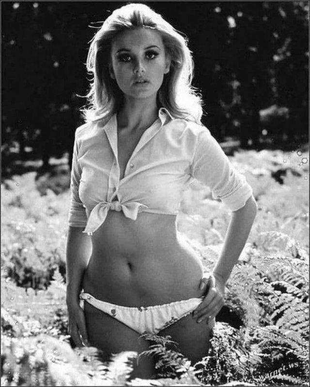 Барбара Буше — итальянская актриса, известная по фильму «Казино Рояль» 1967 года.