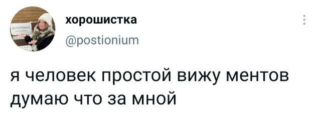 твит про ментов