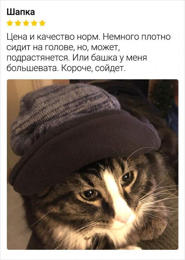 отзыв про шапку