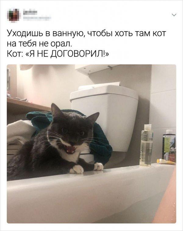твит про ванную