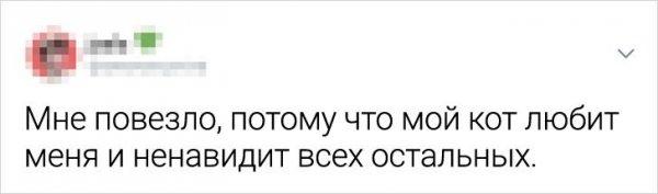 твит любовь