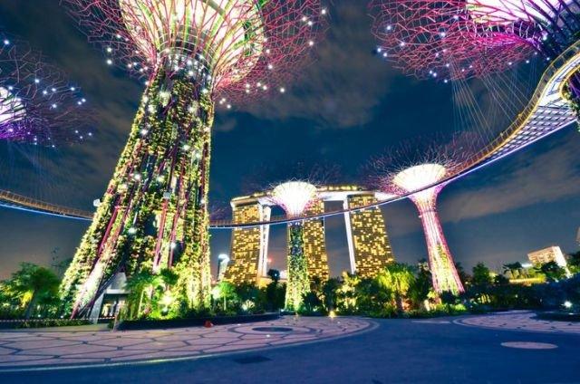 Супердеревья на солнечных батареях вдохнули жизнь в городской оазис Сингапура