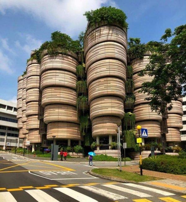 Футуристичное здание университета