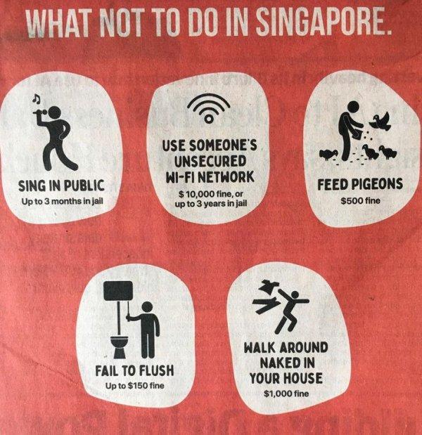 Куда же Сингапур без своей любви к жестким штрафам