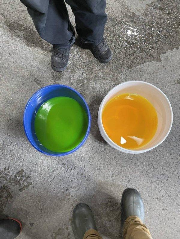 Жидкость одного и того же цвета в разных вёдрах