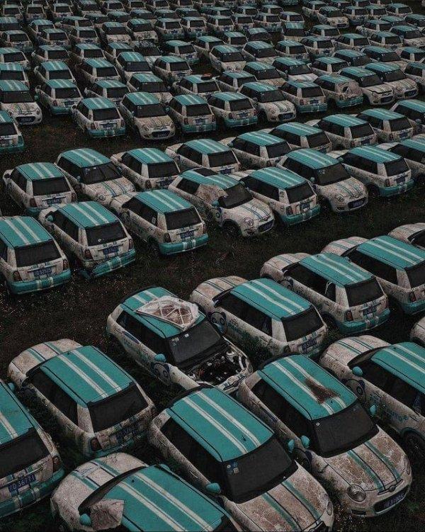 Партия электромобилей сгнила после банкротства