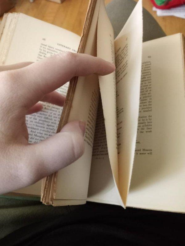 Нашла книгу 119-летней давности