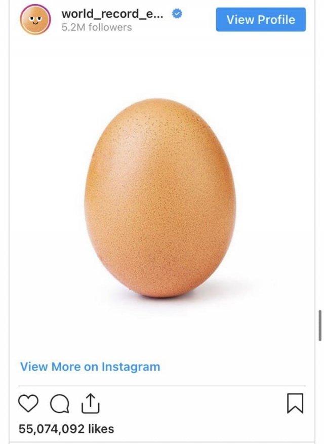 Пользователь с ником world_record_egg 4 января 2019 года опубликовал яйцо с призывом побить рекорд самого популярного на тот момент снимка в «Инстаграме» — фотографии ребенка модели Кайли Дженнер. Рекорд, как видите, держится до сих пор.