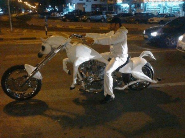 Ещё один вариант комбинации мотоцикла и коня