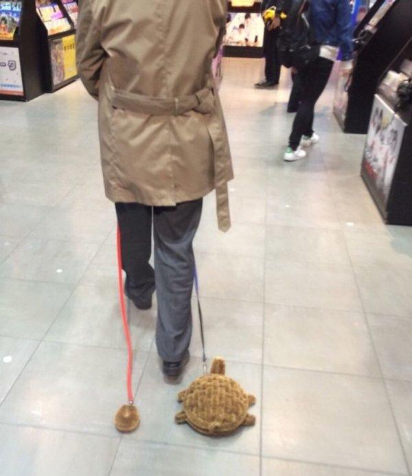 Часто можно встретить людей... со странностями. Например, этот мужчина выгуливает игрушечных черепах