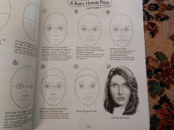 С такими инструкциями каждый сможет стать художником