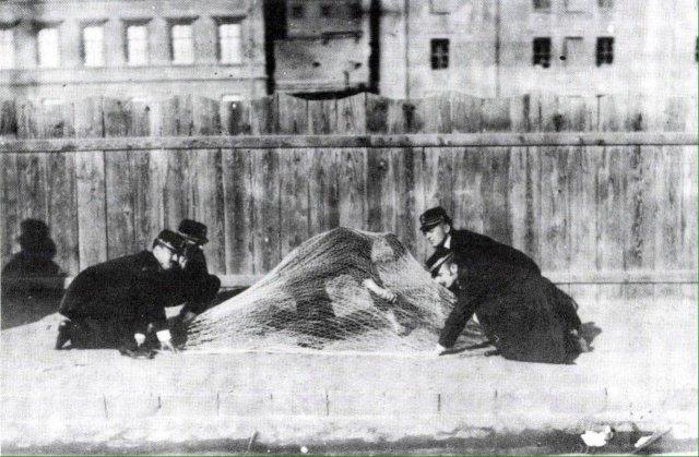 Медработники отрабатывают технику ловли буйных сумасшедших. Венгрия, 1903 год.