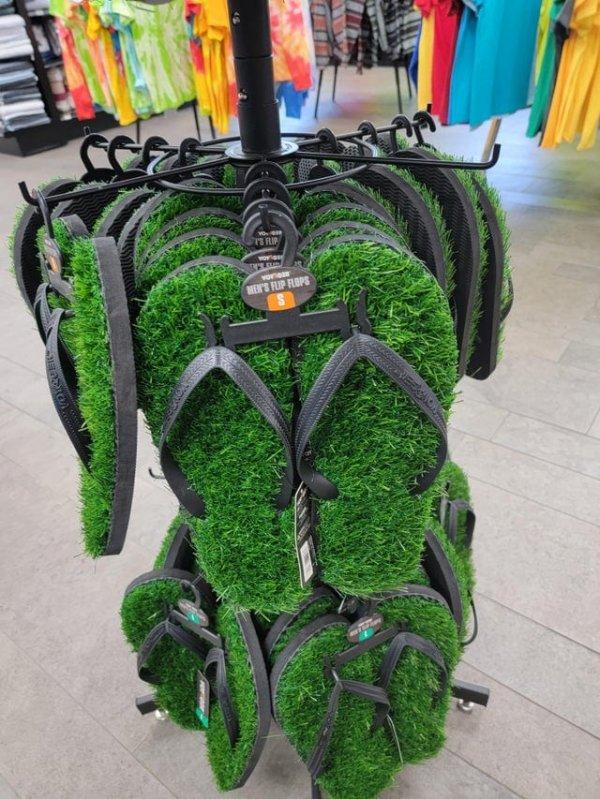 Сланцы с персональным газоном под ногами