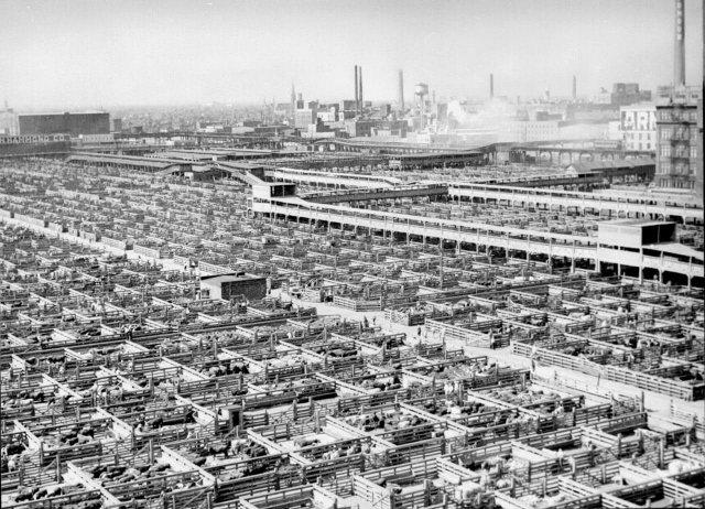 Скотобойня Чикаго, США. Построена в 1865 году и проработала 106 лет.