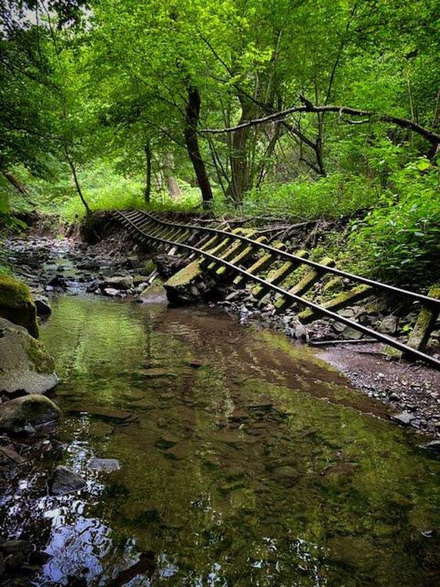 Заброшенная железная дорога посреди леса