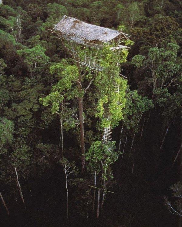 Пустующий дом одного из коренных племён Бразилии