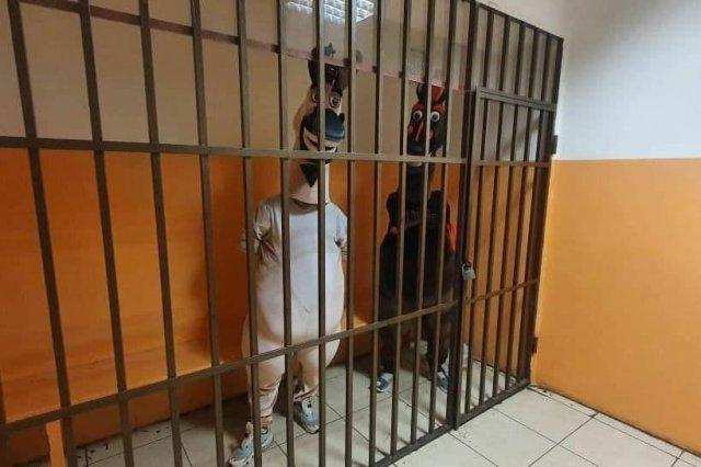 Нелепые задержанные: в Адлере задержали наглых преступников, заставлявших туристов с ними фотографир