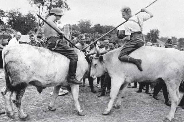 """Немецкий """"Рыцарский турнир"""" во время отдыха, Советский Союз, сентябрь 1942 года."""