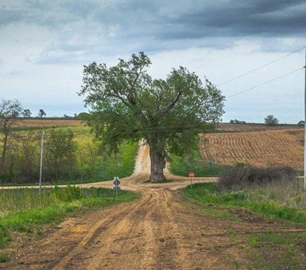 Вот что называют сельской кольцевой дорогой
